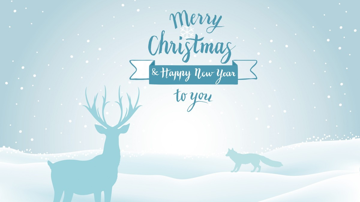 ''Merry Christmas And Happy New Year''