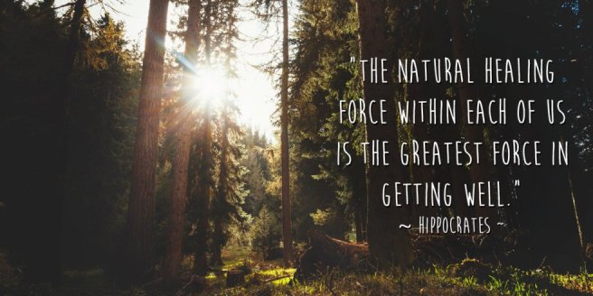 the-natural-healing-force-within-each-one-of-us-is-the-greatest-force-in-getting-well