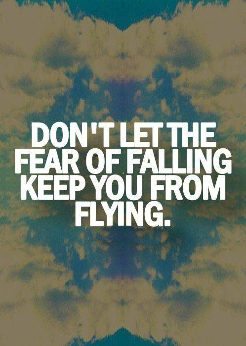 Image result for flying quotes