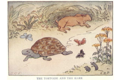 tortoise-versus-hare