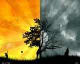 25772_cool-wallpapers-