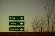 fate-destiny