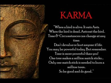 karma-when-a-bird-is-alive-heats-ants-when-the-birds-is-dead-karma-quote