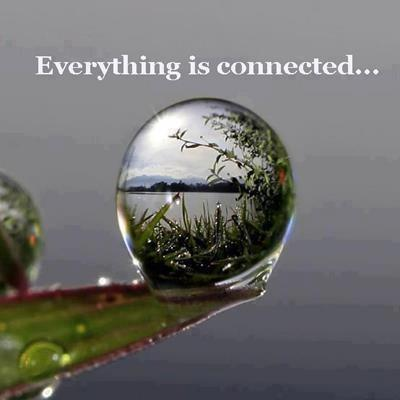 connected (1)