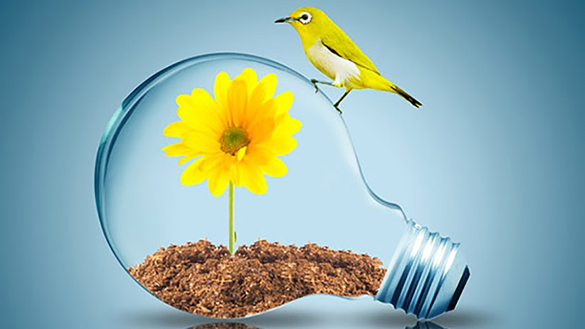 """""""Change Your Thoughts And You Change YourWorld."""""""