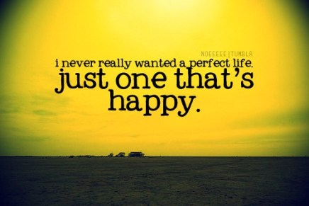 I-never-really-wanted-a-perfect-life-just-one-that-s-happy_--id3861-1