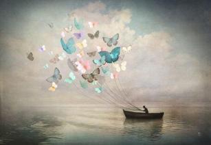 butterflies-pulling-a-canoe