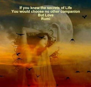 46f4c556cafc34671565f637b4bee596--rumi-tattoo-the-secret-of-life
