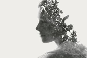 Art-of-Mindfulness-Main